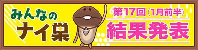 180105_naisu_namepara.jpg