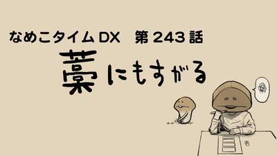 243sozai_title.jpg