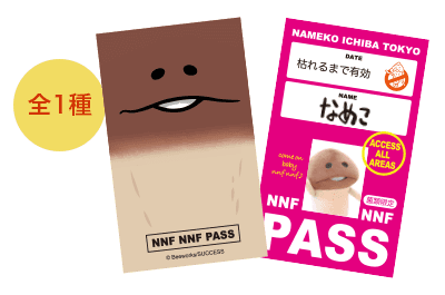 facepasscard.png
